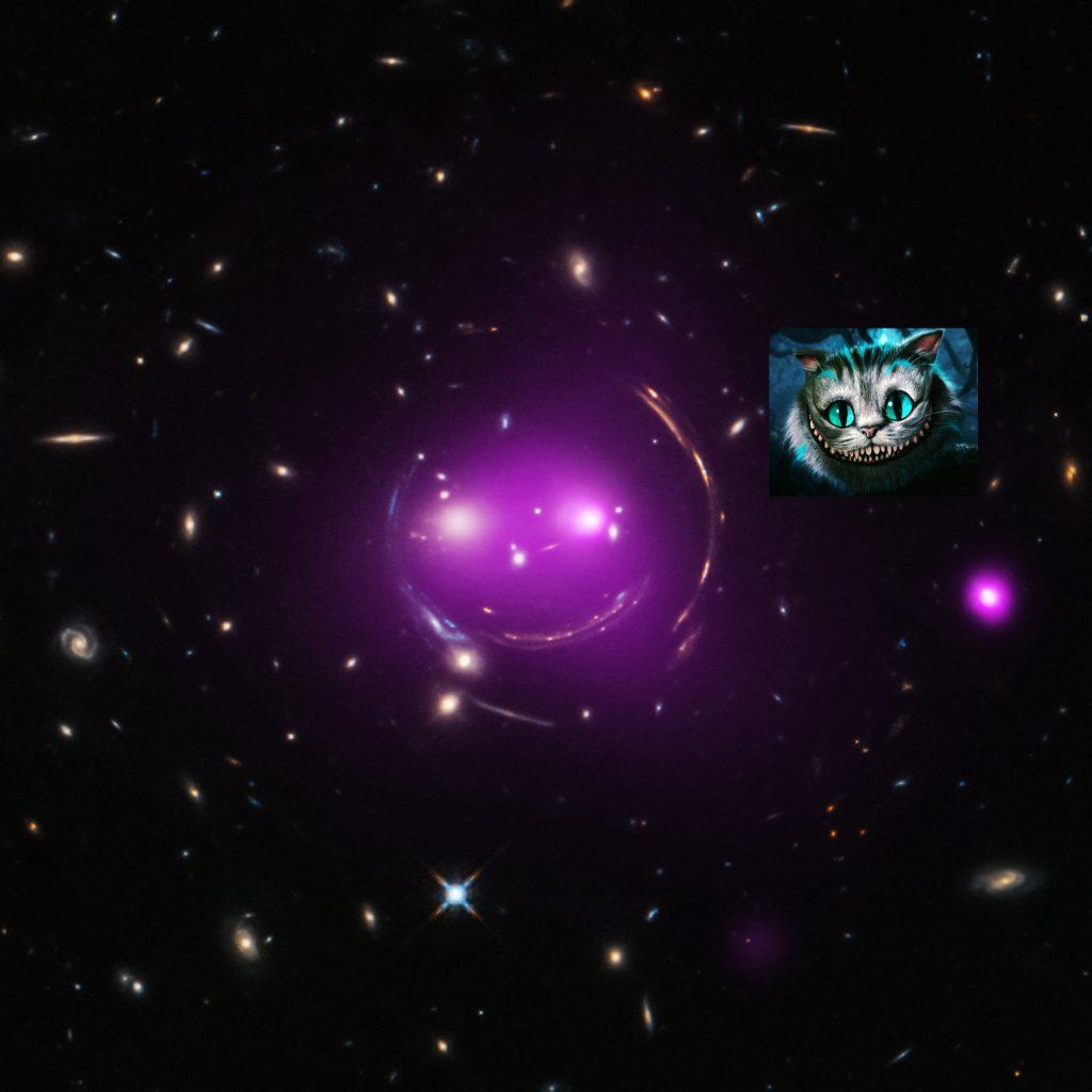 gato galaxia